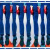 Papier hygiénique - Pieds - 194 x 280 cm Seletti Maurizio Cattelan multicolore | Pierpaolo Ferrari