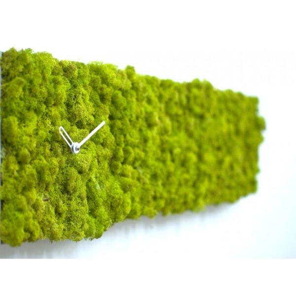 RELOJES Clock_circle Green Progetti Studio Kuadra 1