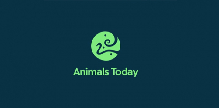 Animais-Today