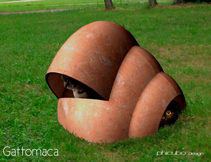 phicubo-gattomaca