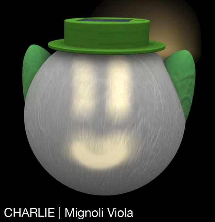 Charlie_Mignoli_Viola