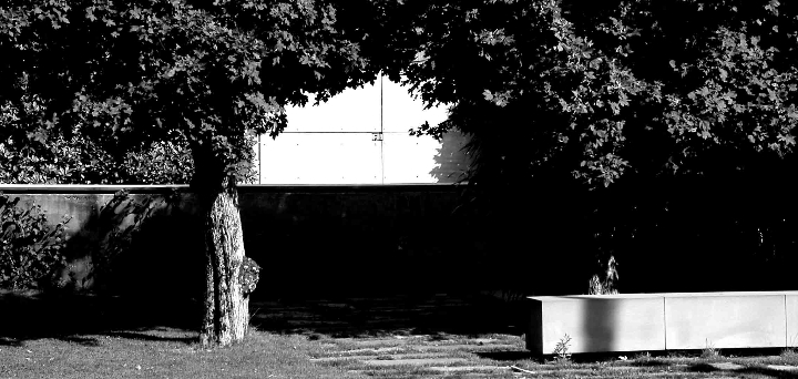 Jardim bigi 4
