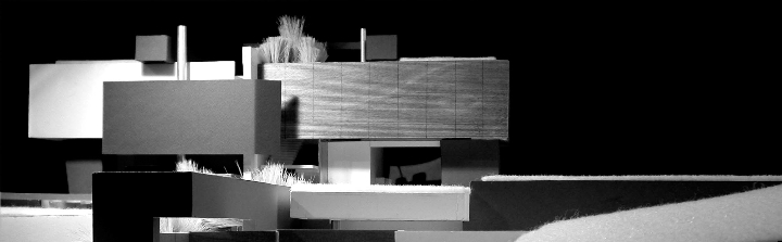 architecture skeins house n. 1