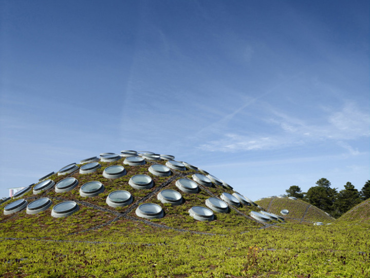 California-academy-of-sciences-vert-toit 2