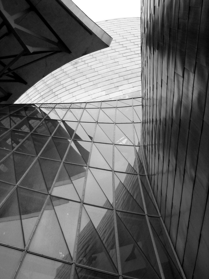 Frank Gehry Guggenheim Bilbao 01