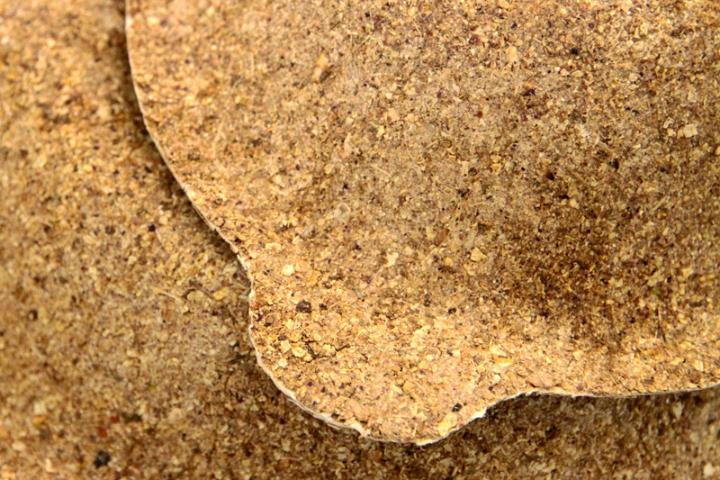 FOODSCAP arachide texture