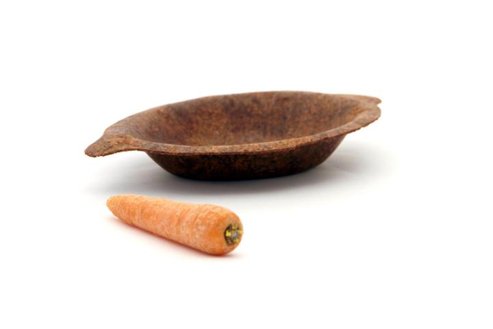FOODSCAP carota01