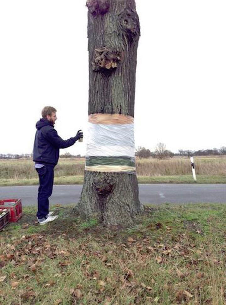 árvore 02 suspensa daniel Siering mario Schuster