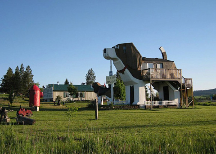 Dog-Shaped-Hotel-003