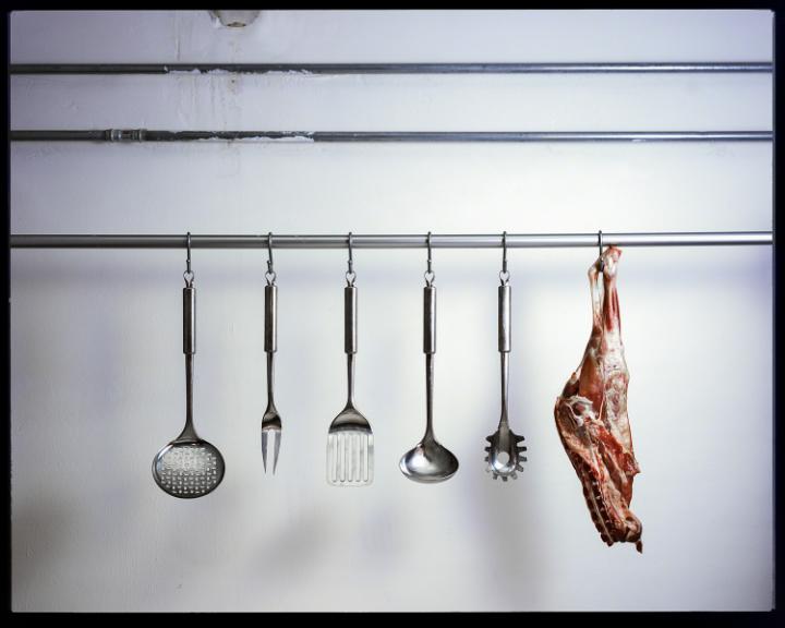composizione di ferri e carne