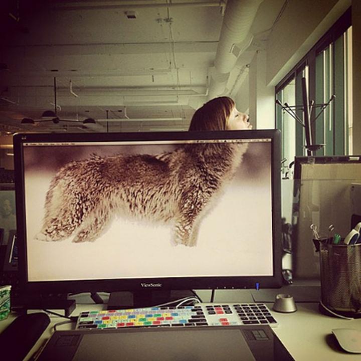 社会的な動物オフィスデザイン雑誌07