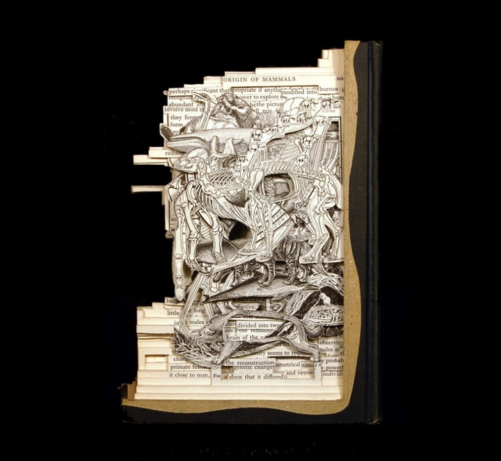 book art sculpture-socialdesignmagazine27