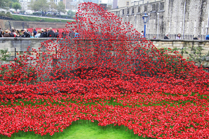 ceramic-poppies-tower-of-london-socialdesignmagazine01