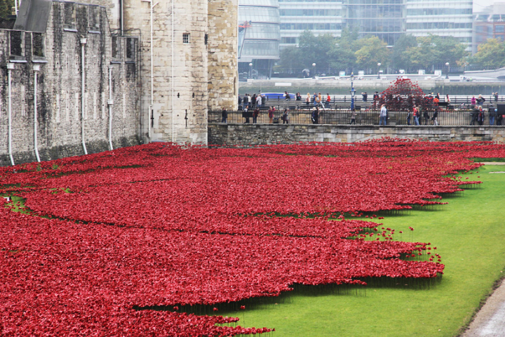 ceramic-poppies-tower-of-london-socialdesignmagazine03