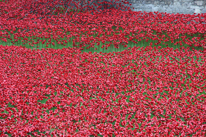 ceramic-poppies-tower-of-london-socialdesignmagazine04