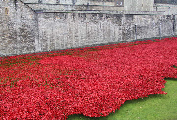 ceramic-poppies-tower-of-london-socialdesignmagazine05