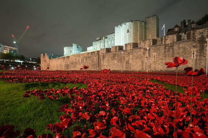 ceramic-poppies-tower-of-london-socialdesignmagazine06