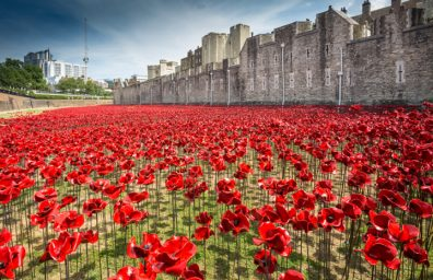 Keramik-Mohn-tower-of-London-socialdesignmagazine11