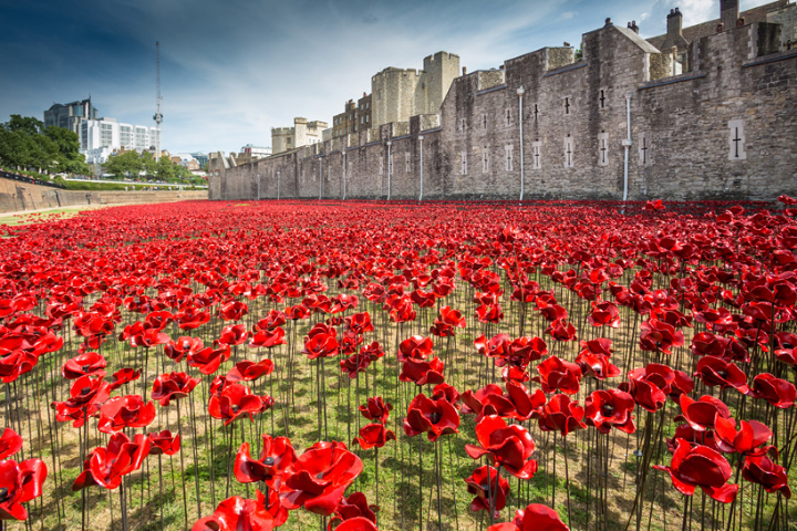ceramic-poppies-tower-of-london-socialdesignmagazine11