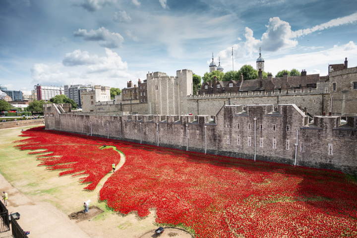 ceramic-poppies-tower-of-london-socialdesignmagazine12