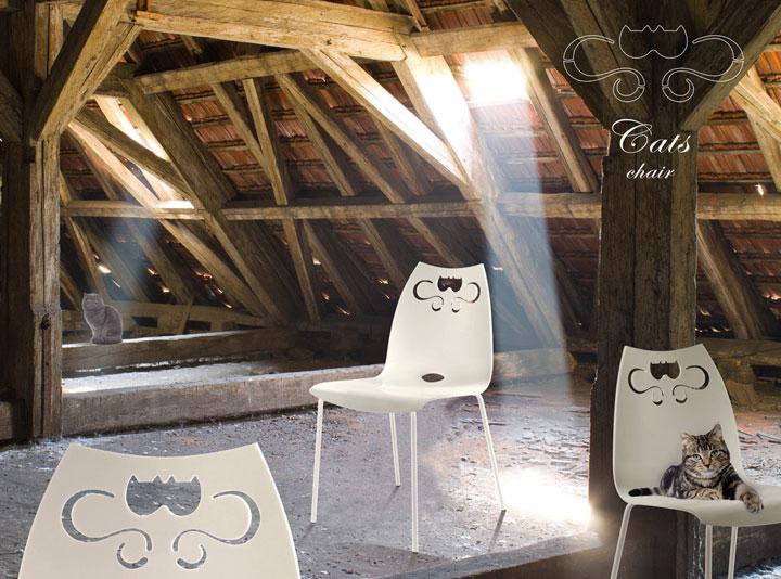 Cats-Solaio-