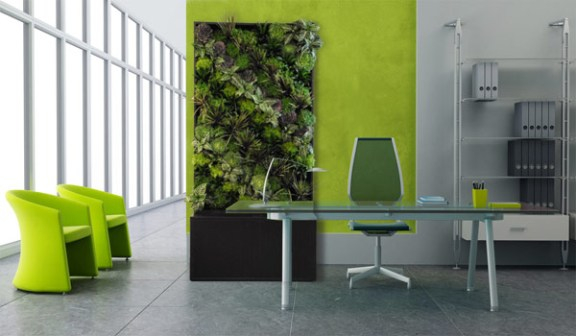 piante-elemento-legno-feng-shui