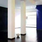 centri yoga