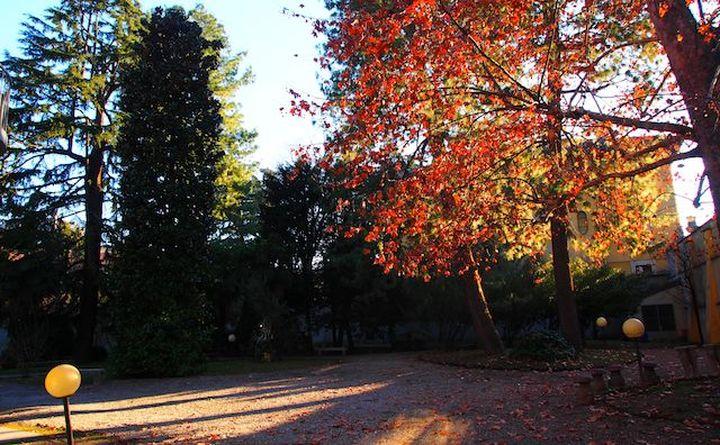 サンヴィットーレ49 6庭園