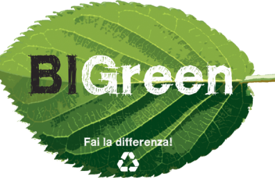 bigreen web logotipo