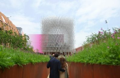 UK pavilion expo milan 2015 wolfgang buttress 1