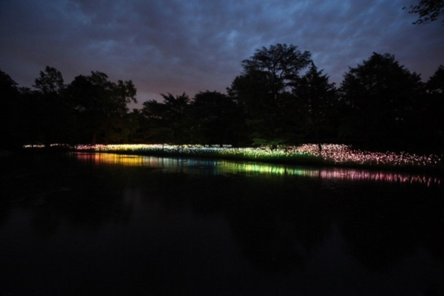 LIGHT!-di-Bruce-Munro-5_hg_temp2_l_full_l