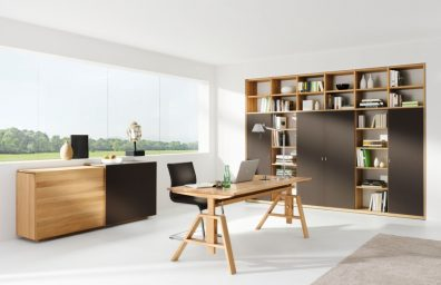 Linea home office team 7