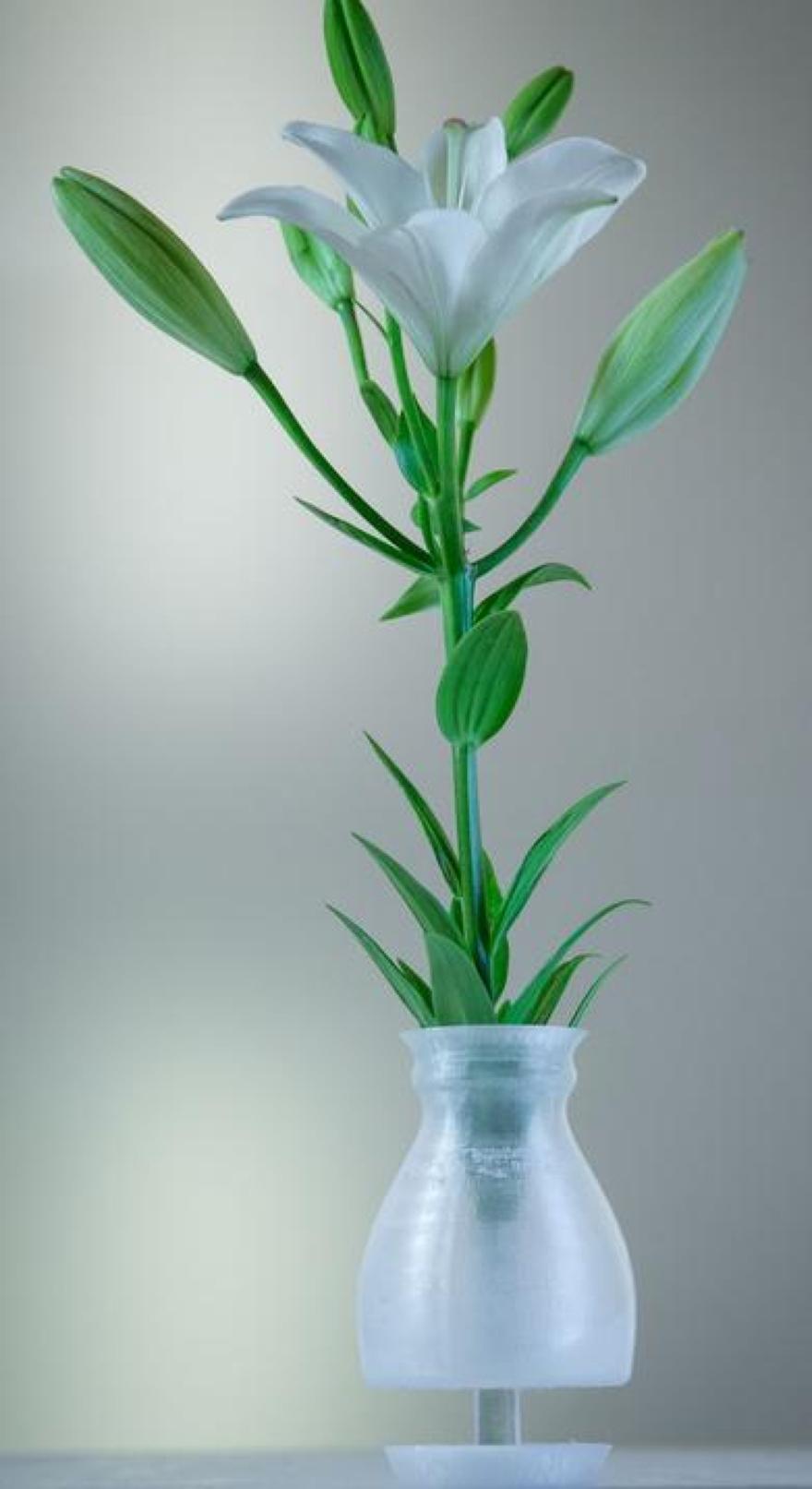 Vasi da fiori 3d printed anomaliy3 by inkinch 03