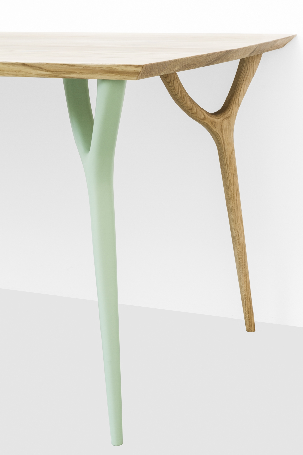 Coleção vegetal projeto Vito Nesta Cadriano 03