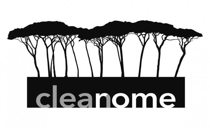Clean Rome