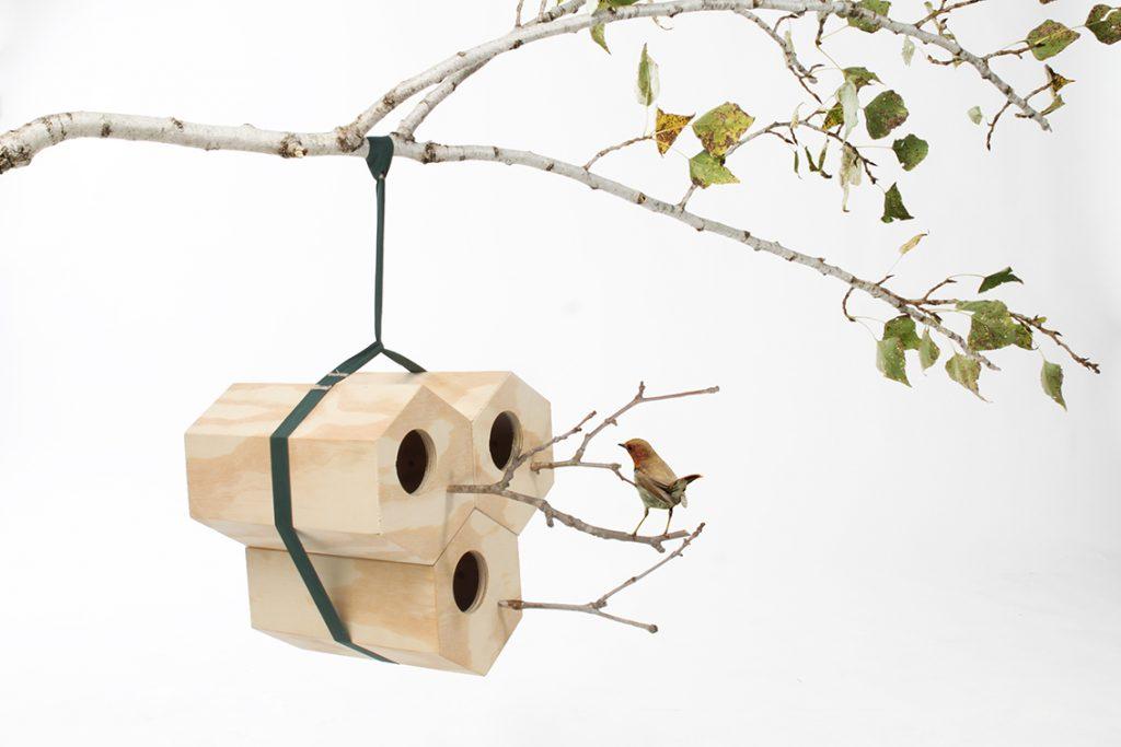 Andreu Carulla Neightbird di Andreu Carulla
